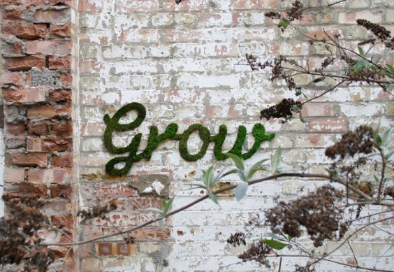 Grow-moss-graffiti-inspiration-e1366038158100