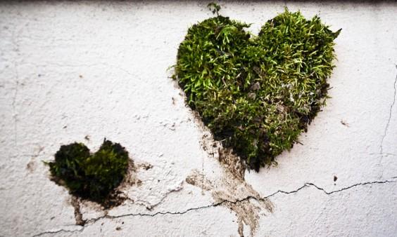 Heart-shaped-moss-graffiti-e1366037163555