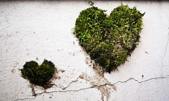 Heart-shaped-moss-graffiti-e1366037163555